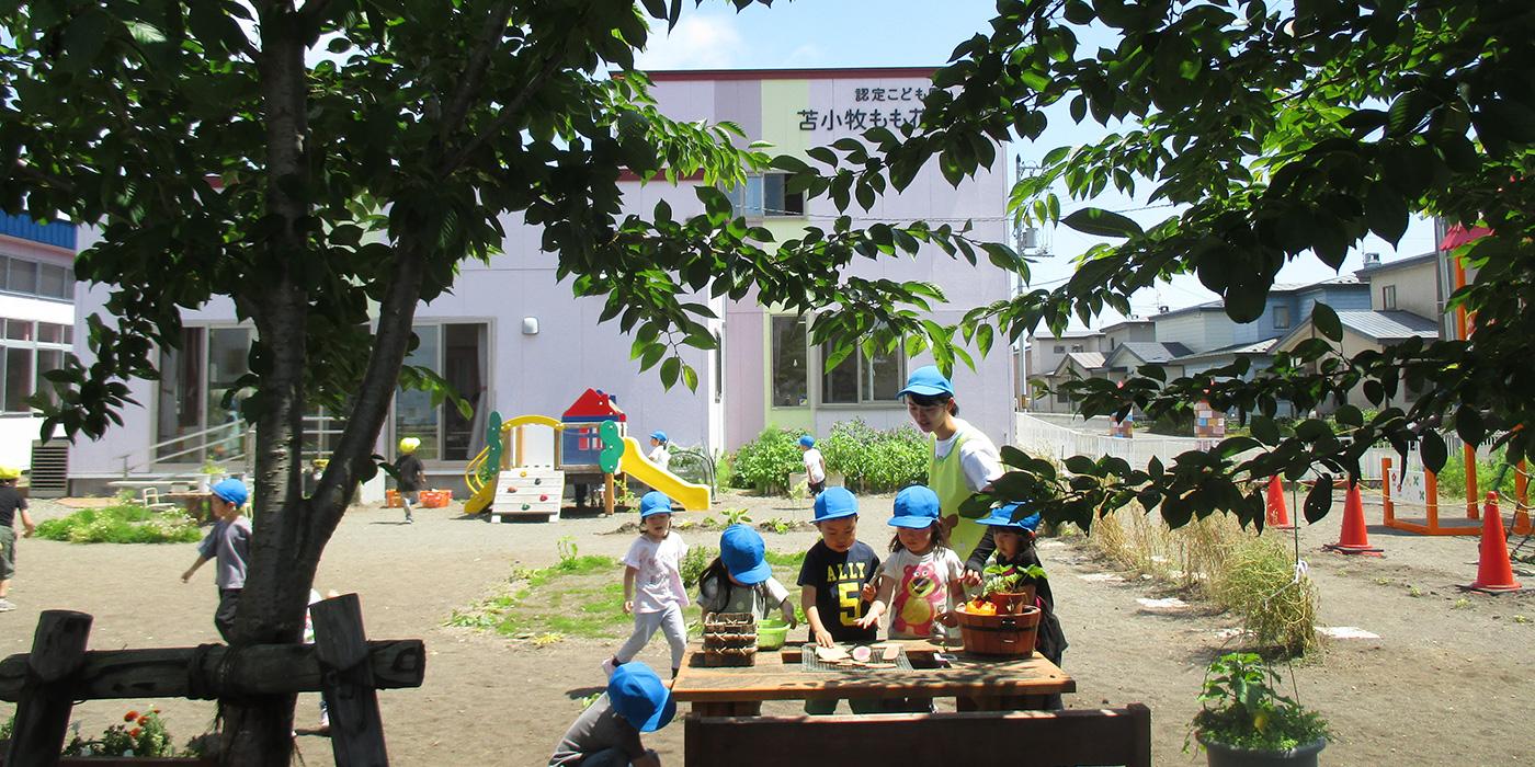 学校法人 浅利教育学園 認定こども園苫小牧もも花幼稚園
